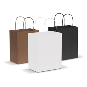Promotional Paper bags supplier