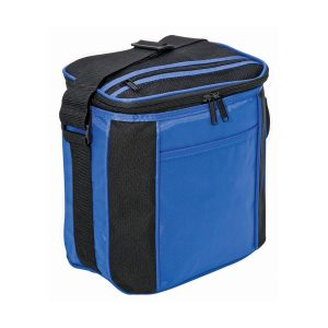 6 Drink Cooler Food Picnic Insulated Bag